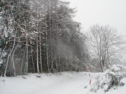 2010.12.23