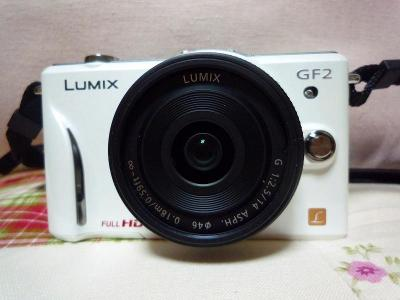 P1160564.jpg