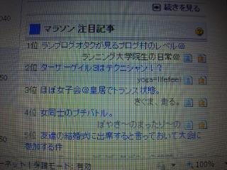 ブログ村人気記事ランキングで1.2☆