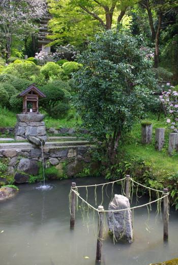 岡寺龍蓋池3