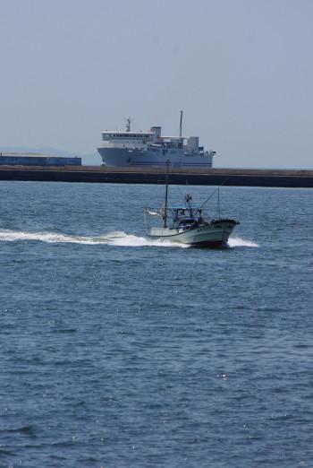 南海フェリ-0