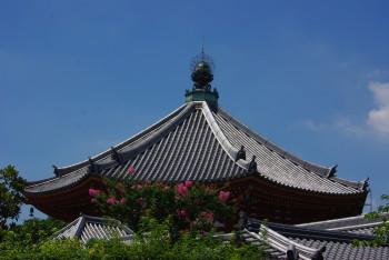 南円堂百日紅1
