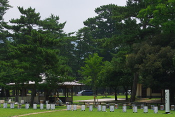 公園2_1