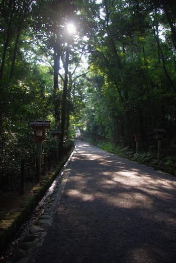 大神神社03