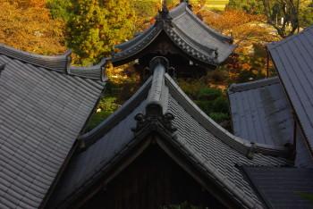 九品寺屋根