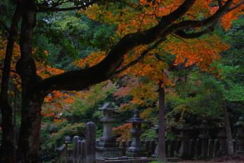 等彌神社1