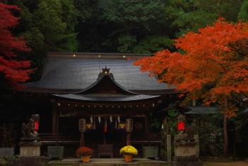等彌神社3