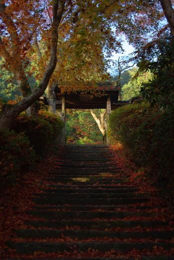 大願寺山門階段
