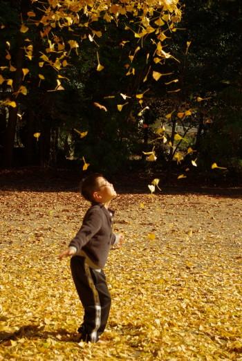 落ち葉で遊ぶ
