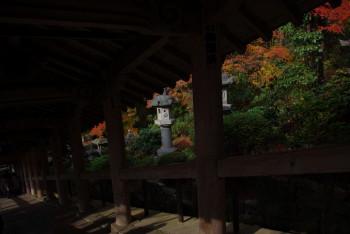 長谷寺階段