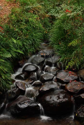 正暦寺流水