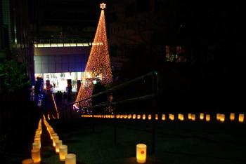 クリスマスライト5