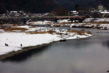 吉野川釣り