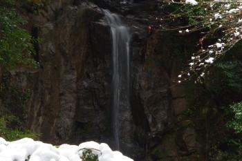 桃尾の滝1