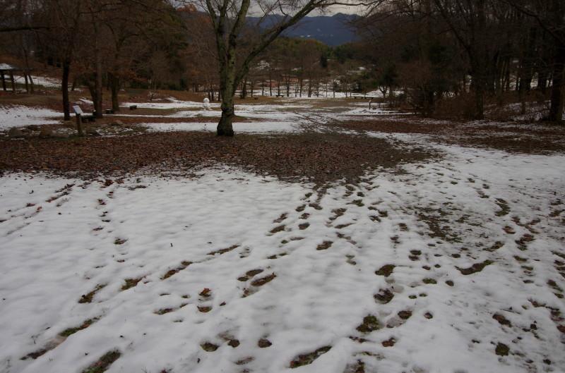 明日香 甘樫 雪景色