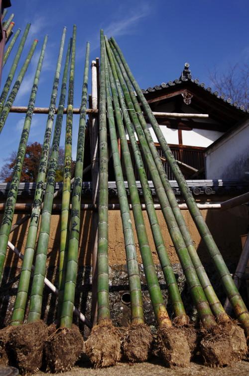 二月堂 お松明の竹