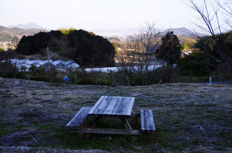 ロータリーの森 ベンチ