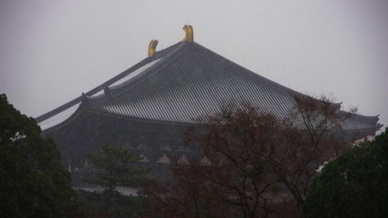 雪の奈良公園 大仏殿甍