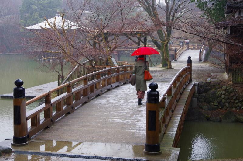 雪の奈良公園 浮見堂