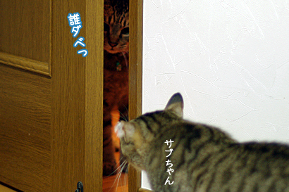 2011-04-12-4.jpg