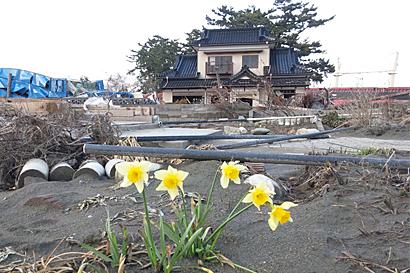 2011-04-27-1.jpg