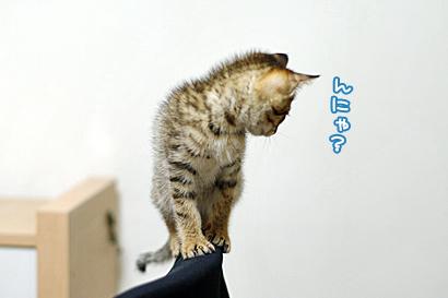 2012-02-18-3.jpg