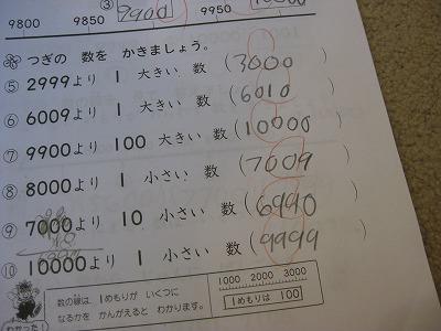 IMG_2991.jpg