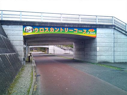 20110411_1.jpg