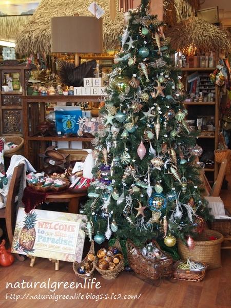 ノースショア クリスマスツリー