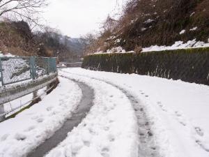 早戸川林道・雪景色 クリックで拡大