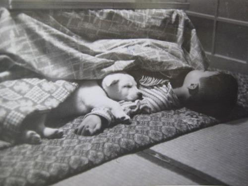 愛犬シロ 19760225