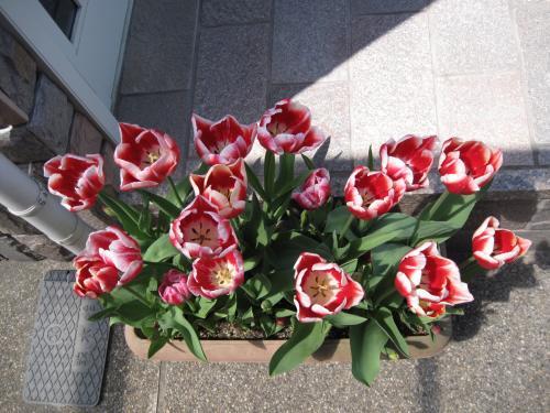 2010春