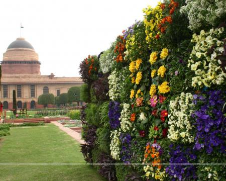 121682-the-mughal-gardens-in-rashtrapati-bhavan-on-monday-.jpg