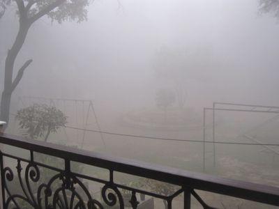 fog080211.jpg
