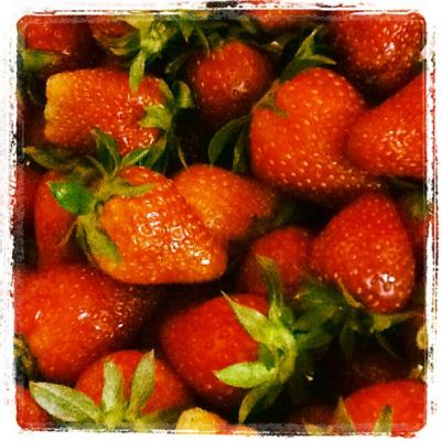 strawberryfarm270312.jpg