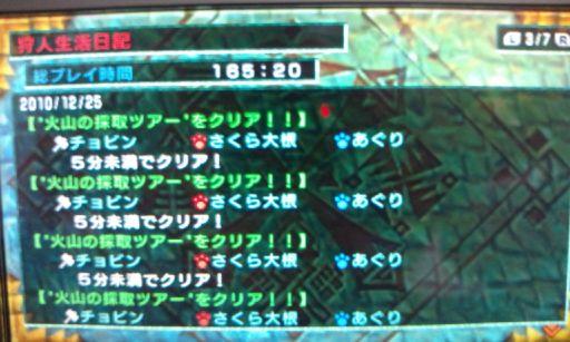 F1003990_20101227200557.jpg