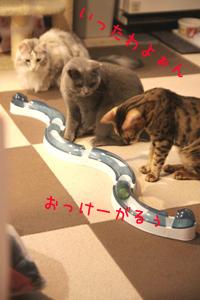 玩具20110321-2