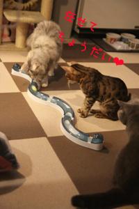 玩具20110321-3