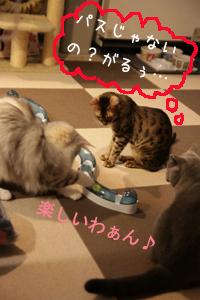 玩具20110321-4