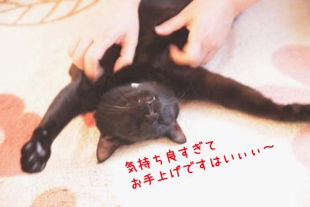 しろう店長20110329