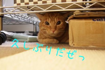 隊長20110421