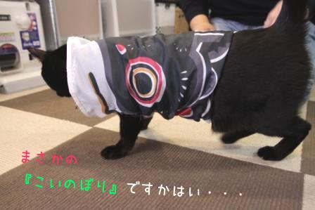 しろう店長20110427-2