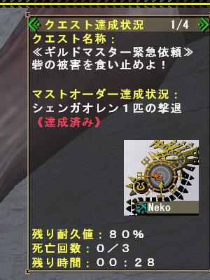 bdcam-2010-06-30-20-53-45-3.jpg