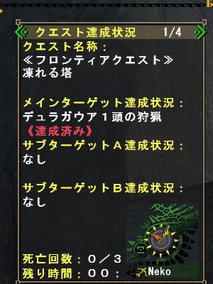 bdcam-2010-07-11-10-04-05-4.jpg