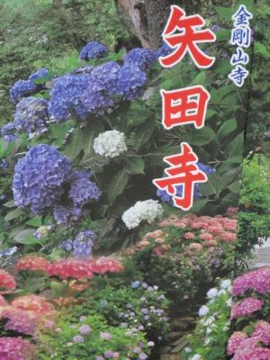 4gSrS_20110624203916.jpg