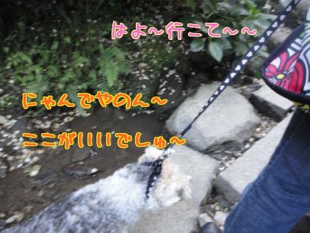 mF4iP.jpg