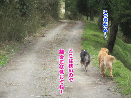 IMG_3133ixy45a.jpg