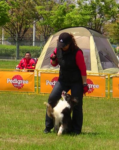 dogdancekiko-003w5.jpg