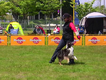 dogdancekiko-004w45.jpg