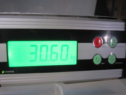 lamori 059